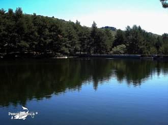 Valle de la Barranca septiembre 2011 (14)-2