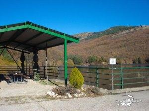 El coto de Miraflores de la Sierra y sus truchas comunes