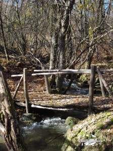 Coto de Miraflores de la Sierra nov 2011 (3)