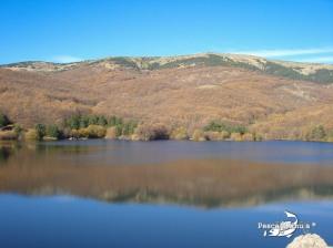 Coto de Miraflores de la Sierra nov 2011 (6)