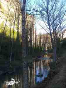 LSM Cuevas Labradas, río Gallo