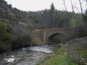 Montes Claros, río Jarama
