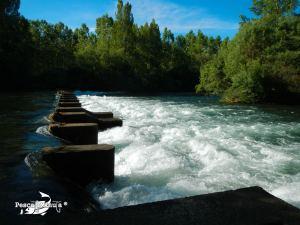 Coto de Gradefes, río Esla