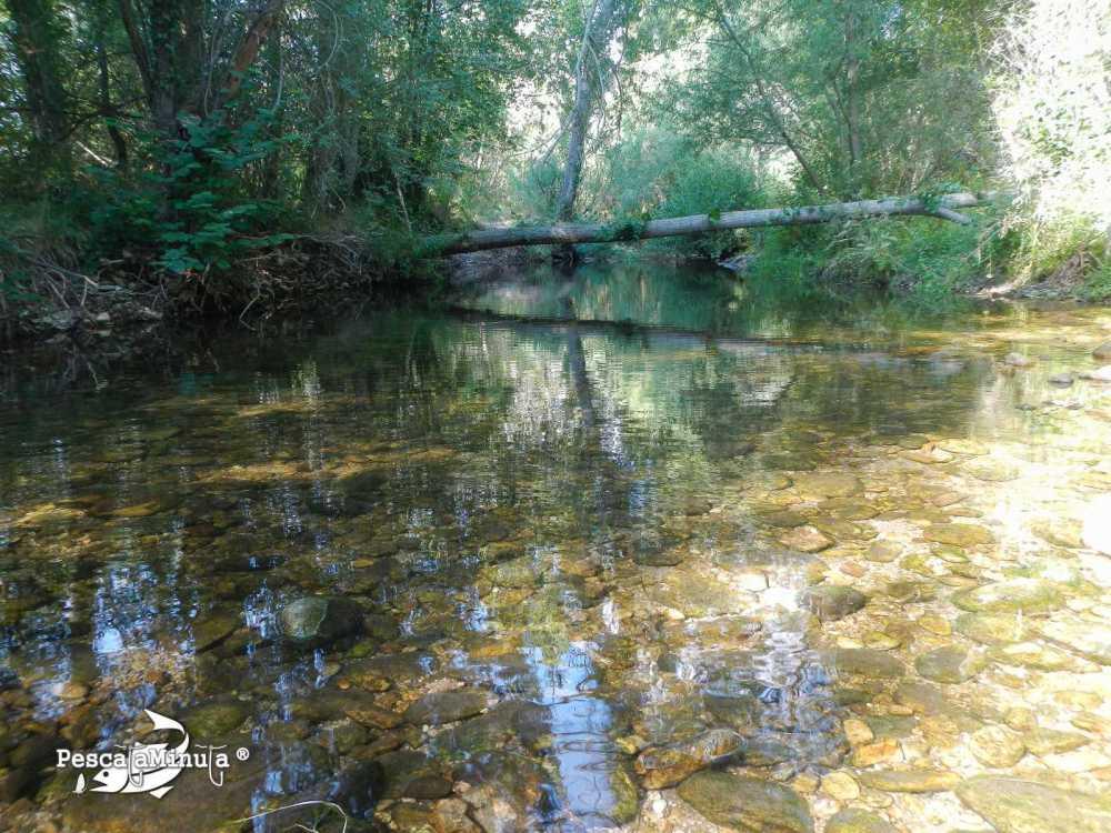 Alameda del Valle
