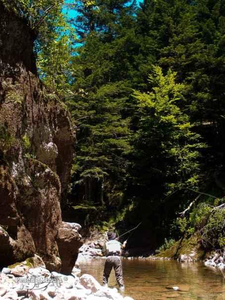 Pirineos 2012 (29)