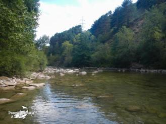 Pirineos 2012 (6)