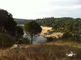 Puente nuevo rio Alberche 25-03-2012