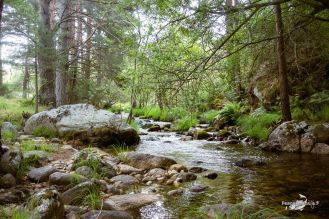 Río Cega
