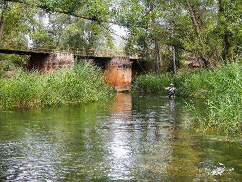 Río Cabriel