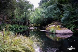Río Mandeo