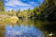 PesqueraPesquera - Río Esla