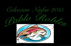 Logo Pablo Robles
