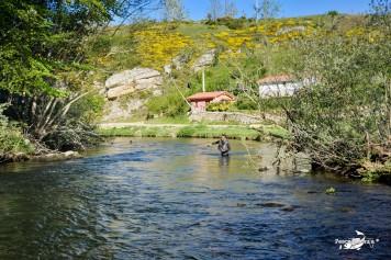 Río Pisuerga