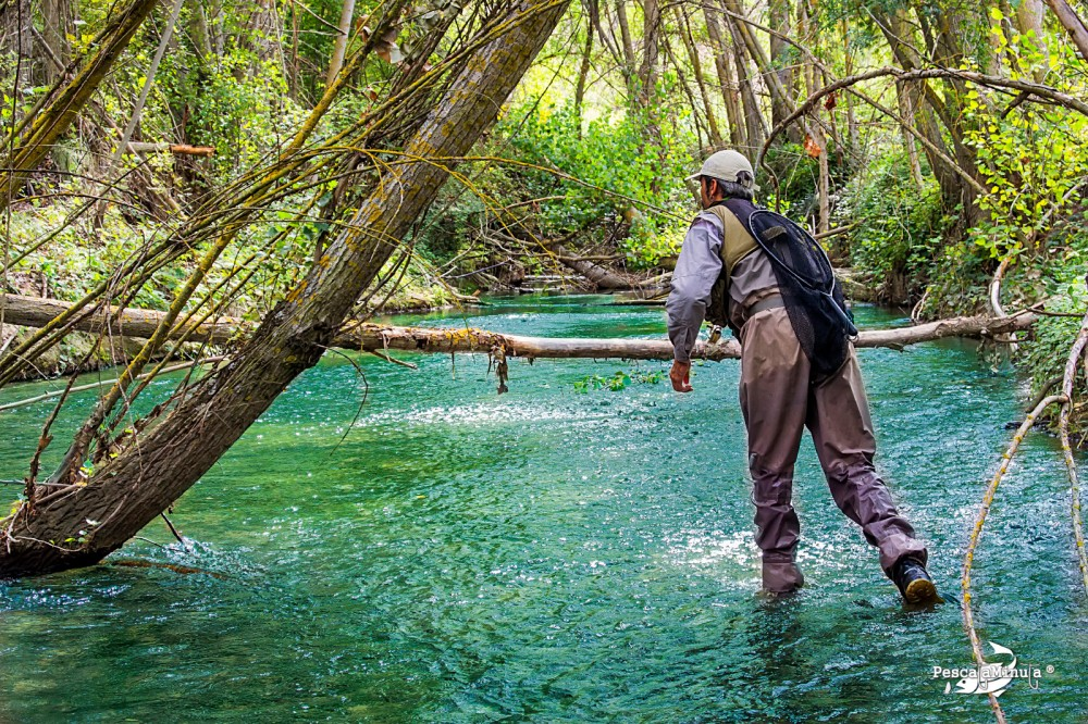 "The Image : "" Calambres "" in action , to fly fishing"