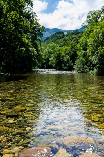 Río Asón