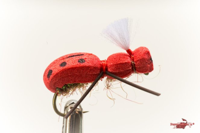 Red bug post