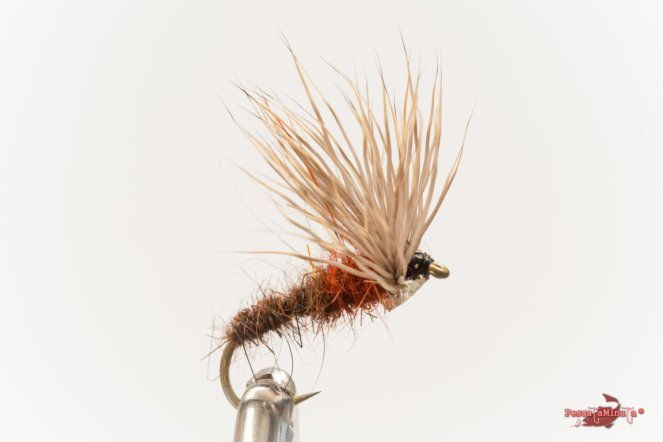 Comparadun fly bicolor