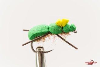Green bug post