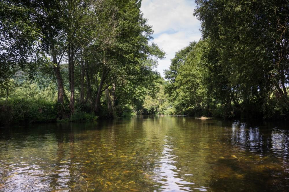 Láncara río Neira 2017 (5)