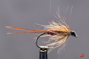 Pheasant tail wine soft hackle
