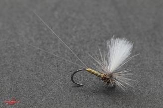 Baetis Rhodani parachute
